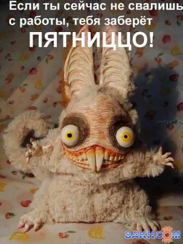 онв83: 555