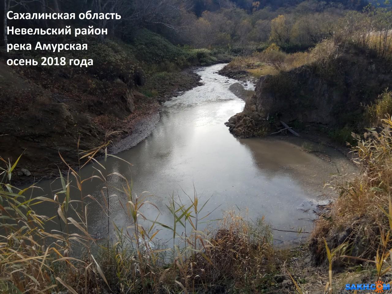 kolya811: IMG_2018144619