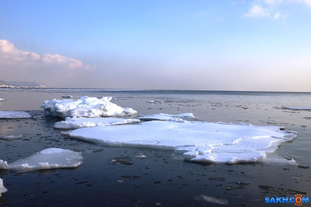 gadzila: Залив Анива