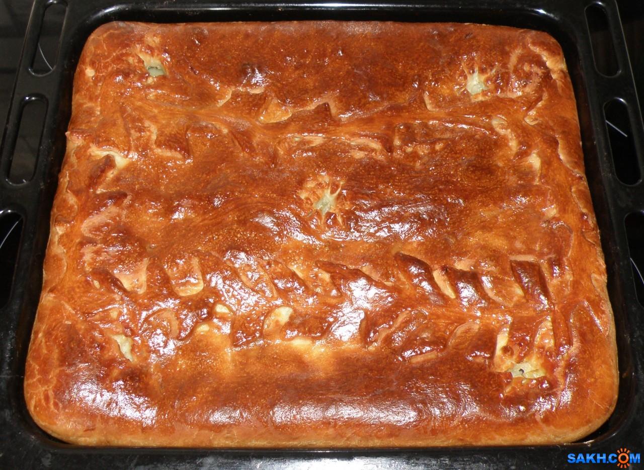 tasya: Пирог: картошка+филе морского окуня.