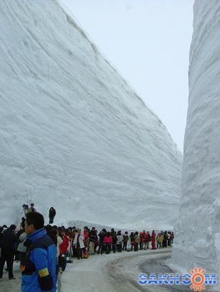 Sheffic: Снег у соседей
