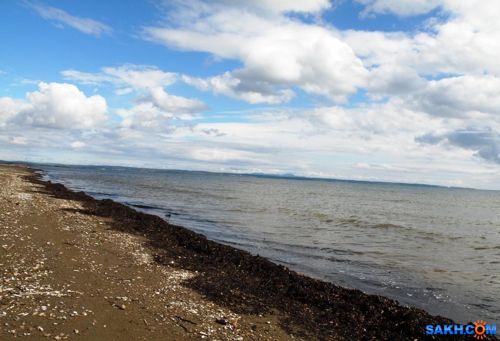 tasya: Анивский залив. Бухта Лососей.