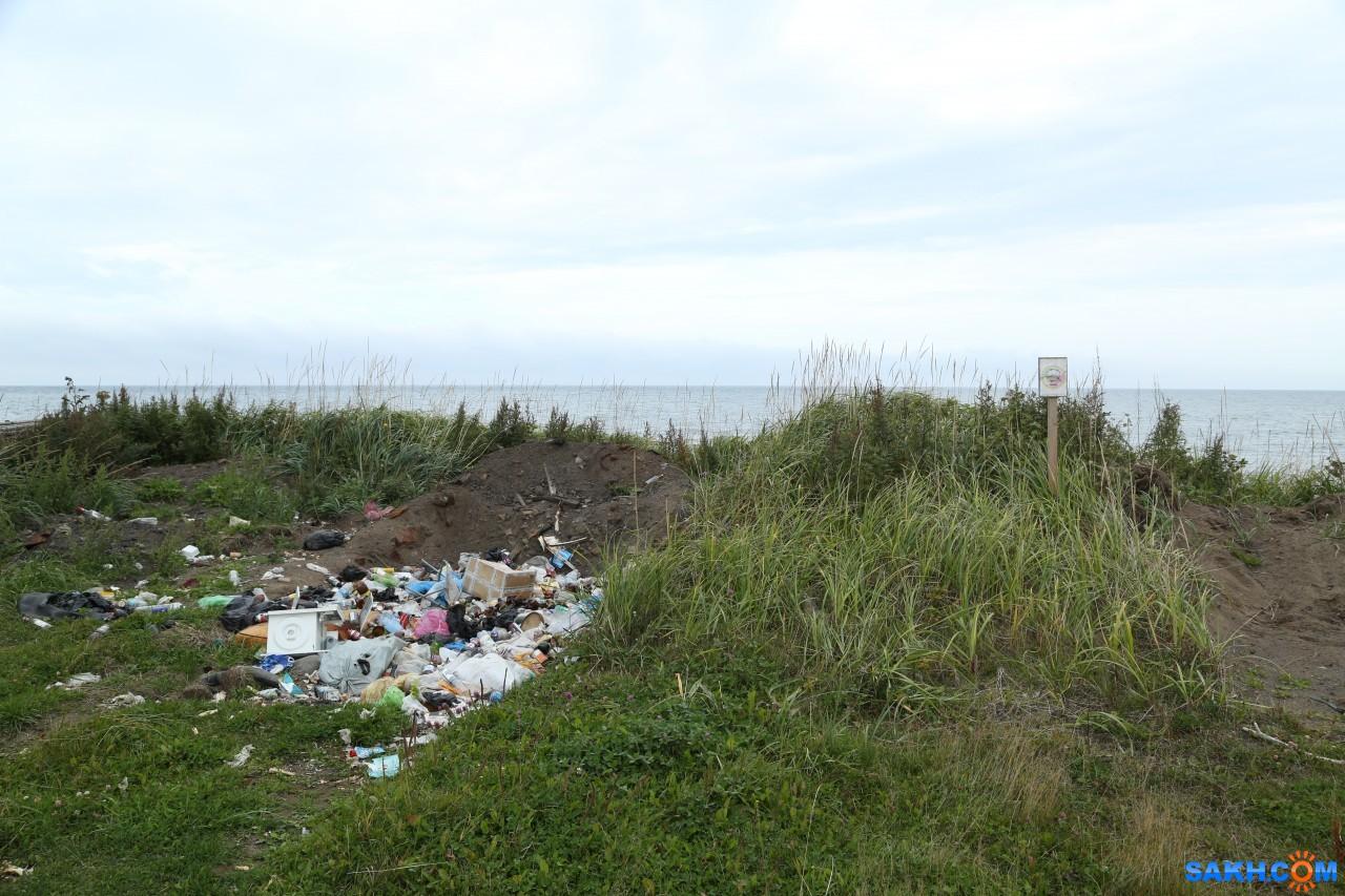 VikoAlena: мусор