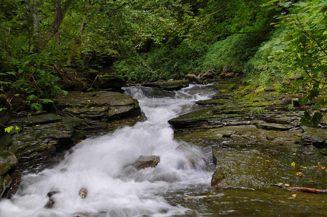 Zinaida: Река Скалистая