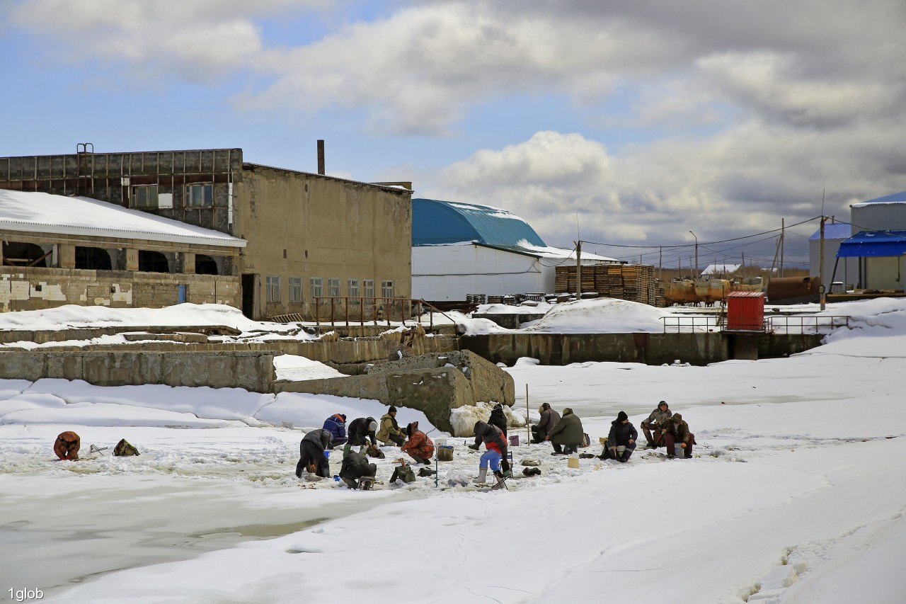 1glob: Зимняя рыбалка продолжается