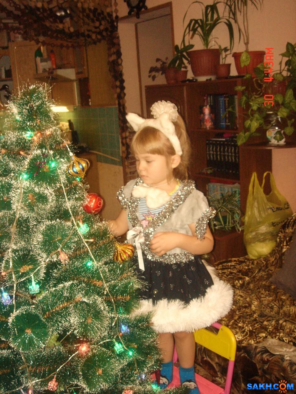 мукомол: Новый год 2014 Алина 002