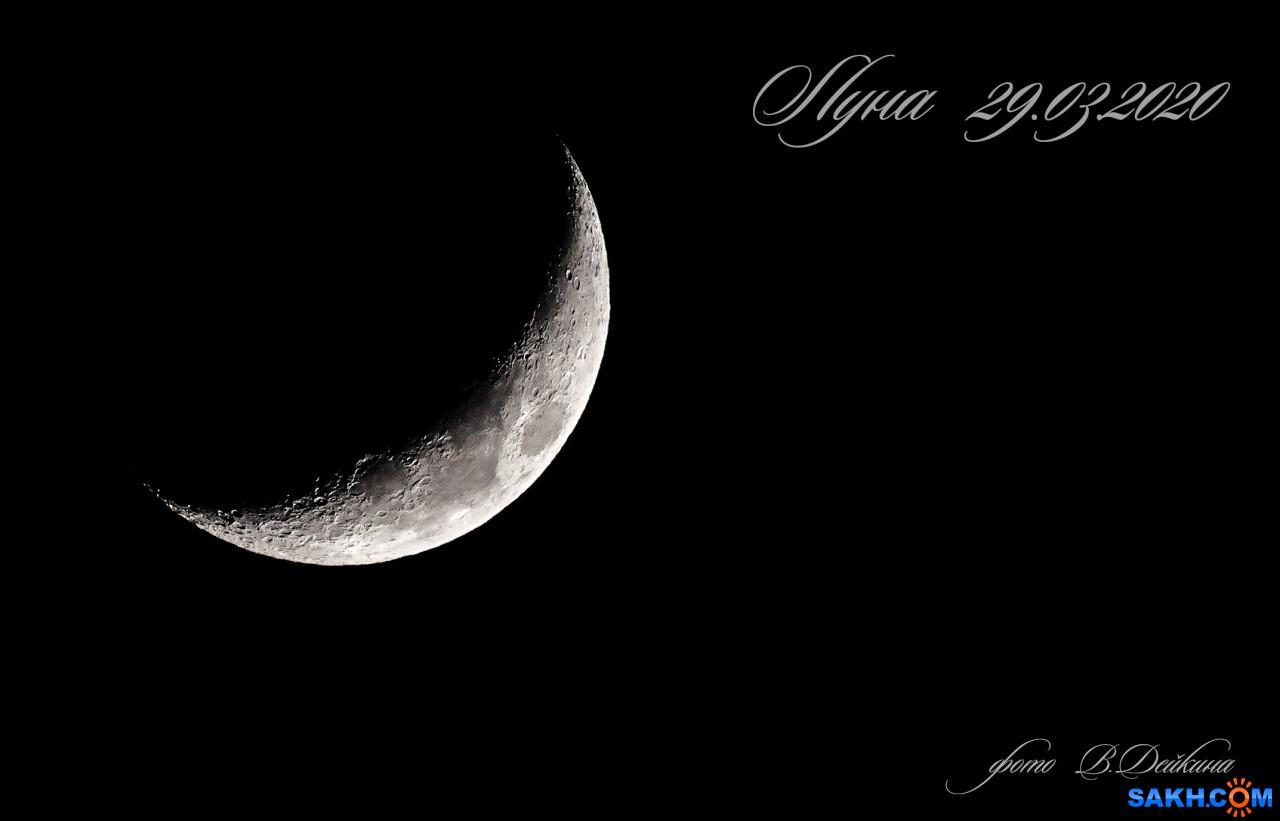 voviksirota: луна