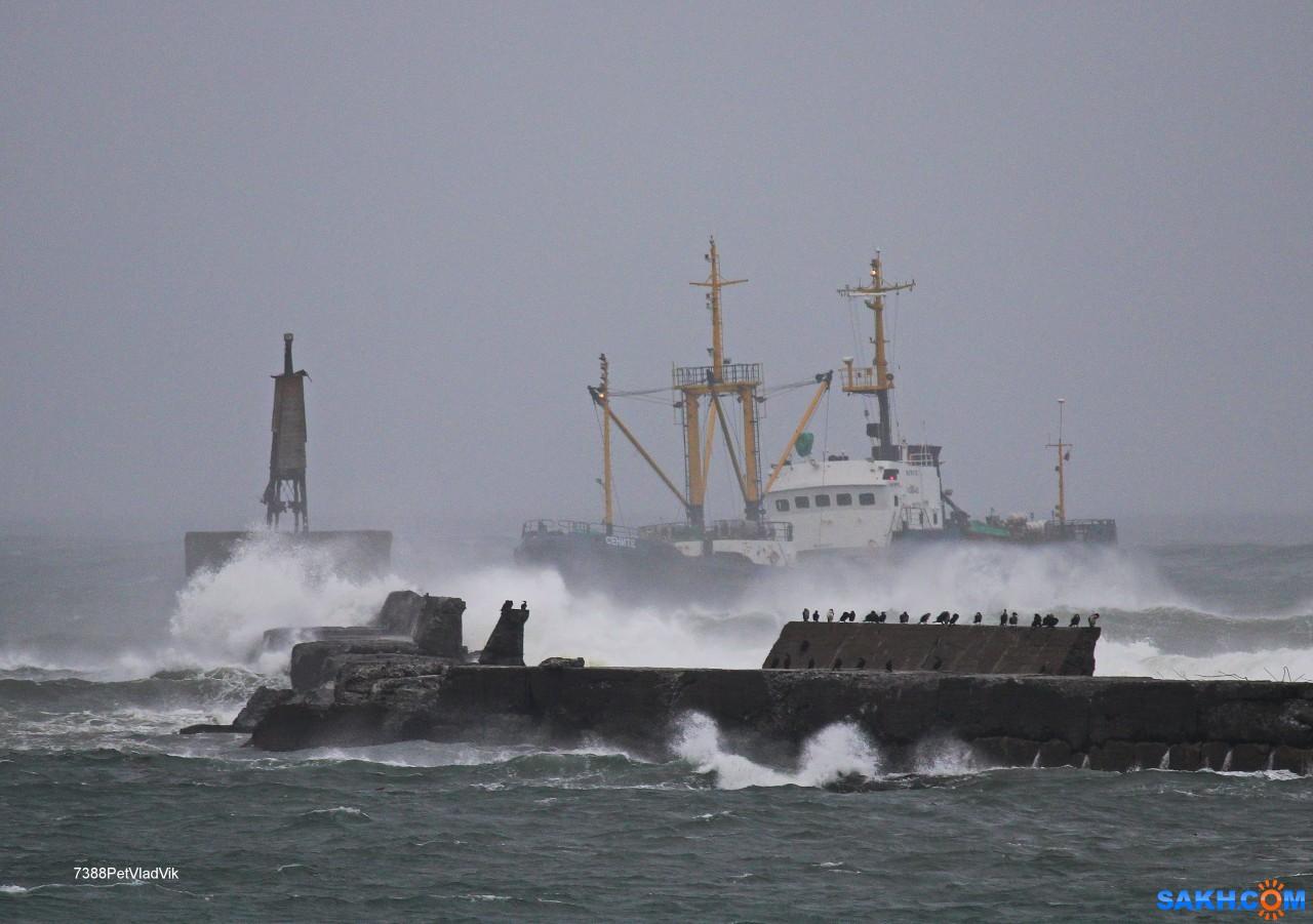 """7388PetVladVik: ПТР """"Сените"""" заходит в порт Невельск."""