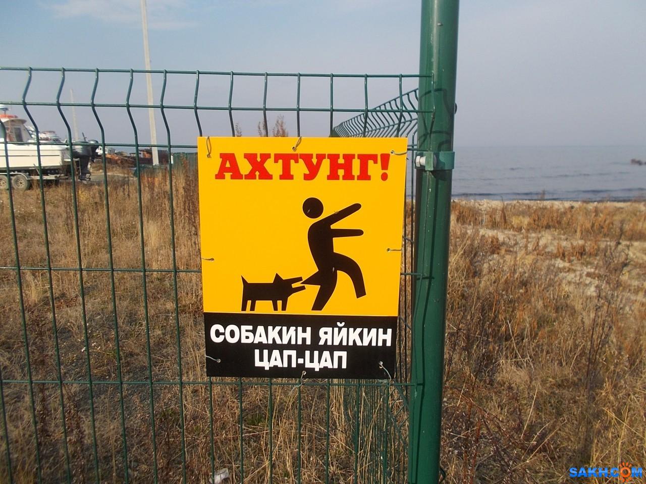 Valery: На заборе яхт-клуба в 1-ой Пади