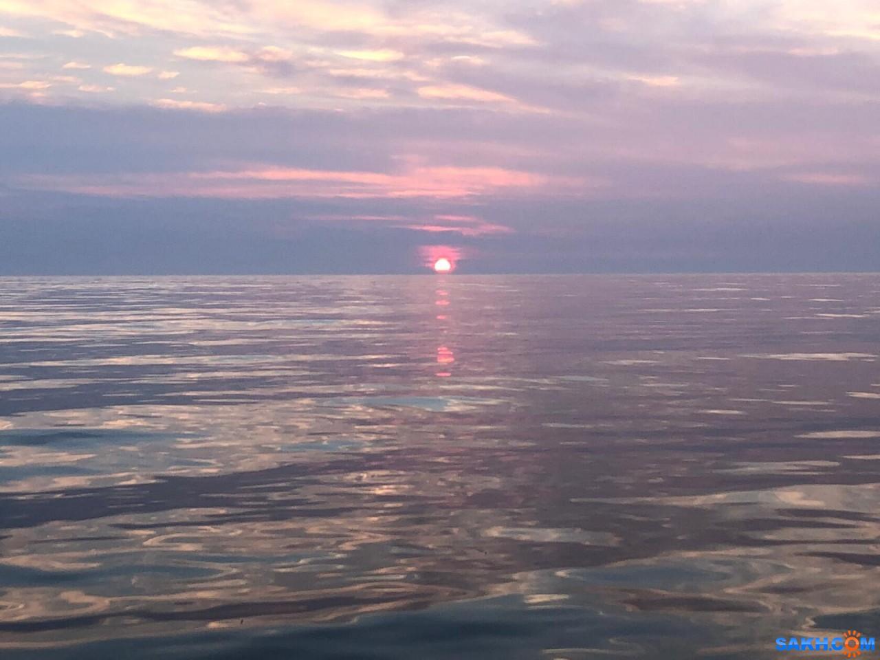 tasya: Сегодня сиреневый закат на юге Сахалина.