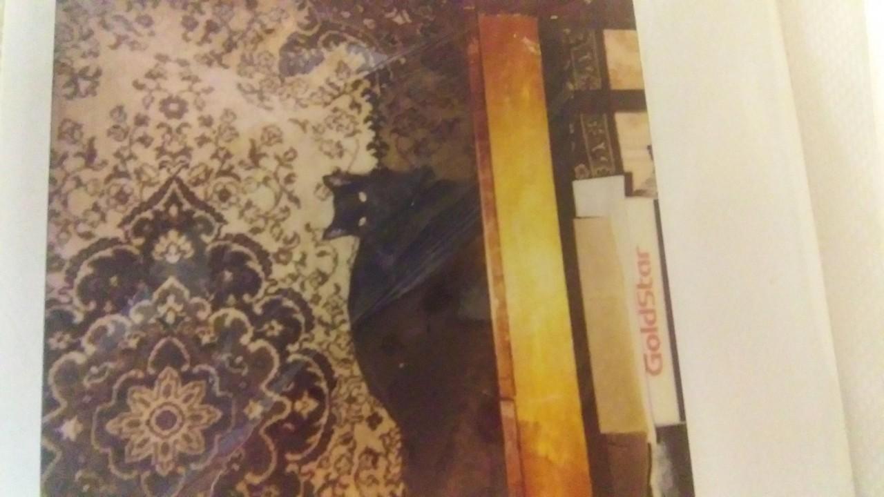 Mariam: Мадам в положении. 1995 г.