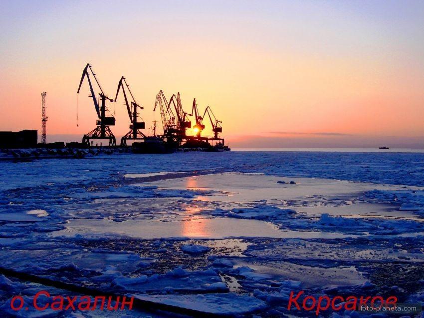 strong.arishka: korsakov-22367