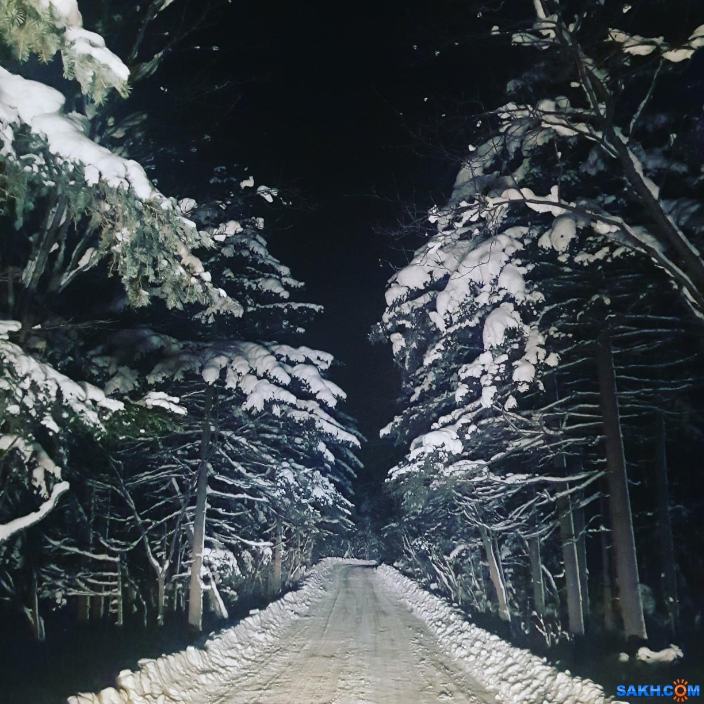 сахалин_чик: 5K8pd4um_JQ