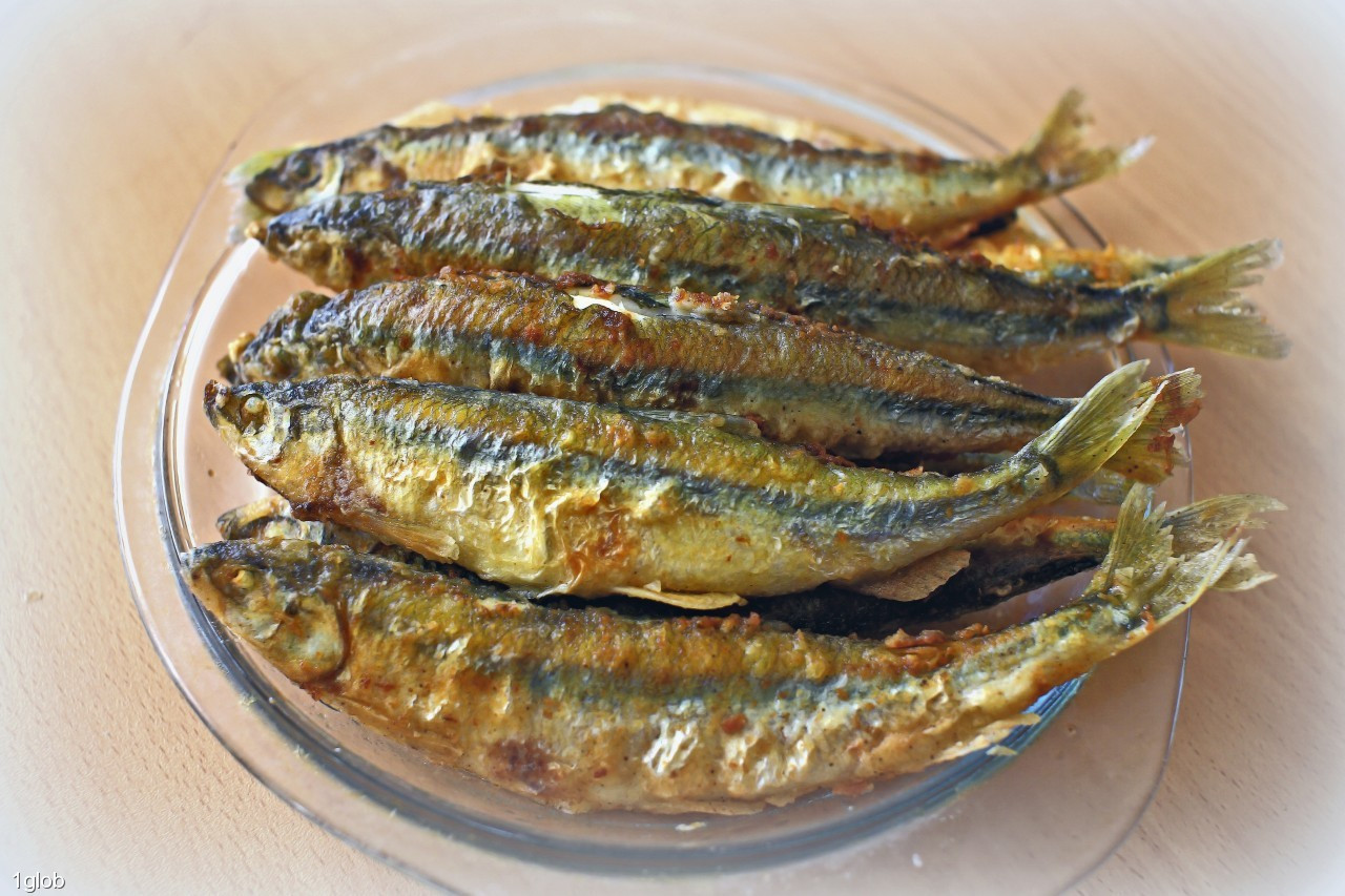 1glob: плоды от рыбалки