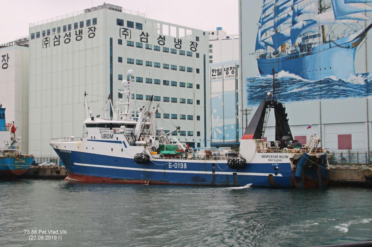 7388PetVladVik: МОРСКОЙ  ВОЛК.  (бывший  SEA HUNTER 1,  AVANGARD,  SERMILIK.   IMO 8704963,  MMSI 273311650,  CS UBOM).  Порт  Пусан.