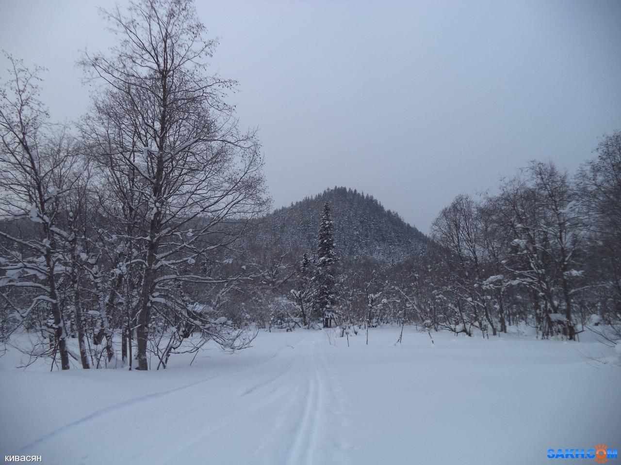 кивасян: DSC00006