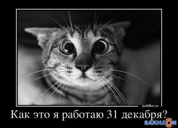 EXPERT19..: №2