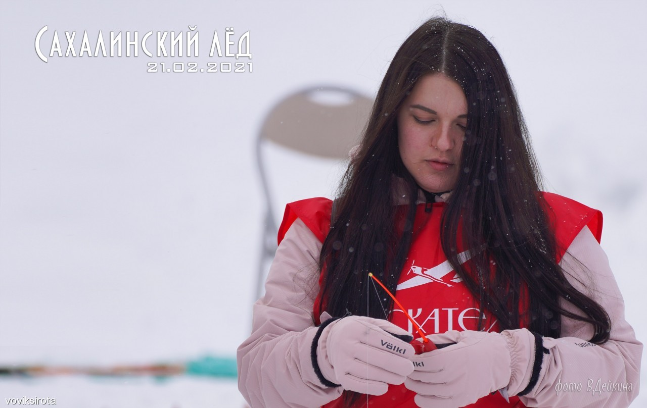 voviksirota: сах лед 21 . 12