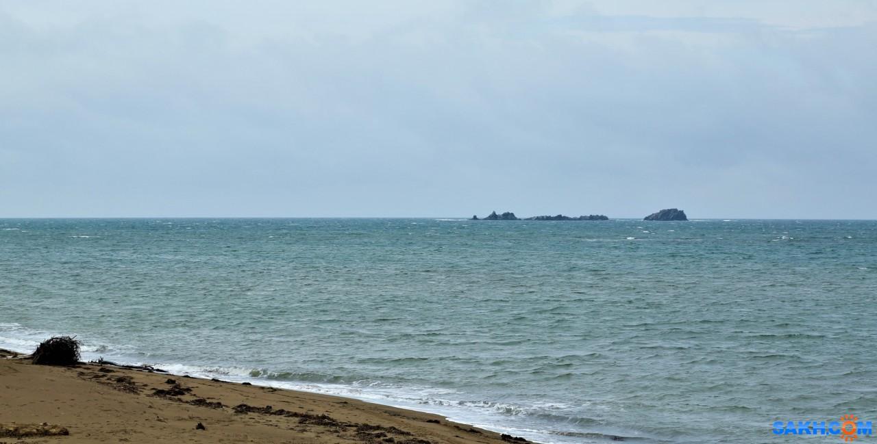VikoAlena: море
