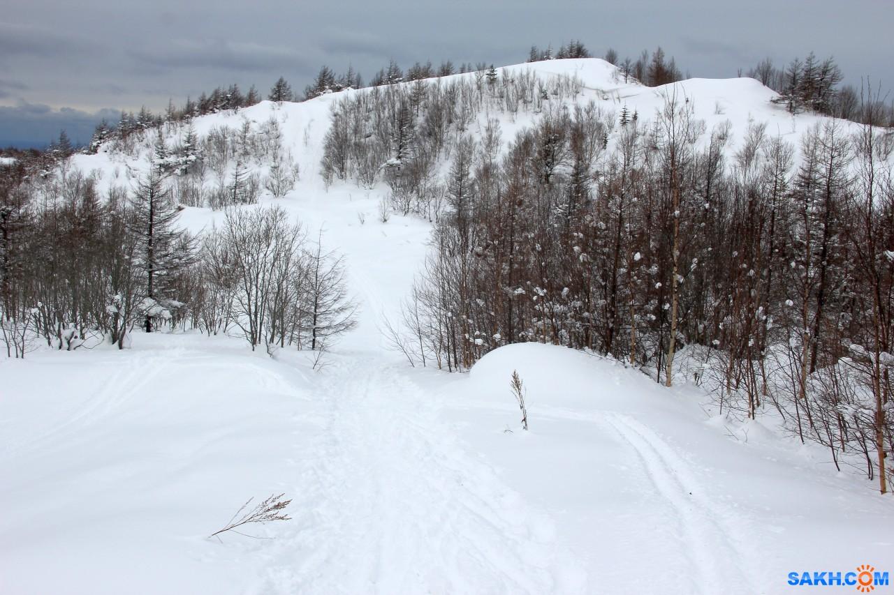 Leonty: Лыжня на Швейцарию