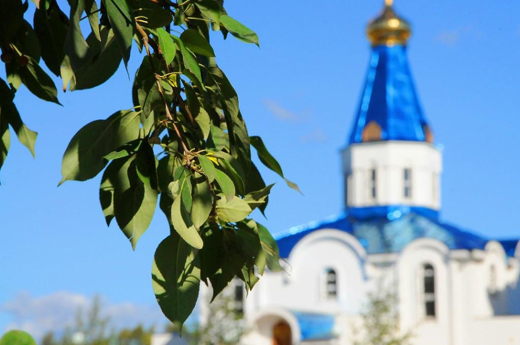 КЕС: Листья на фоне церкви.