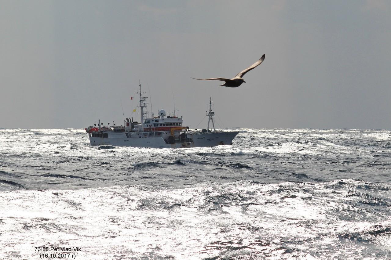 7388PetVladVik: Татарский пролив. Морские картинки.  (На фото промысловая шхуна НЕОН).
