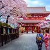 """Групповой эконом-тур в Японию """"Сакура в цвету"""""""