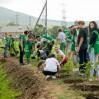 Сбер организовал экологическую акцию в Южно-Сахалинске