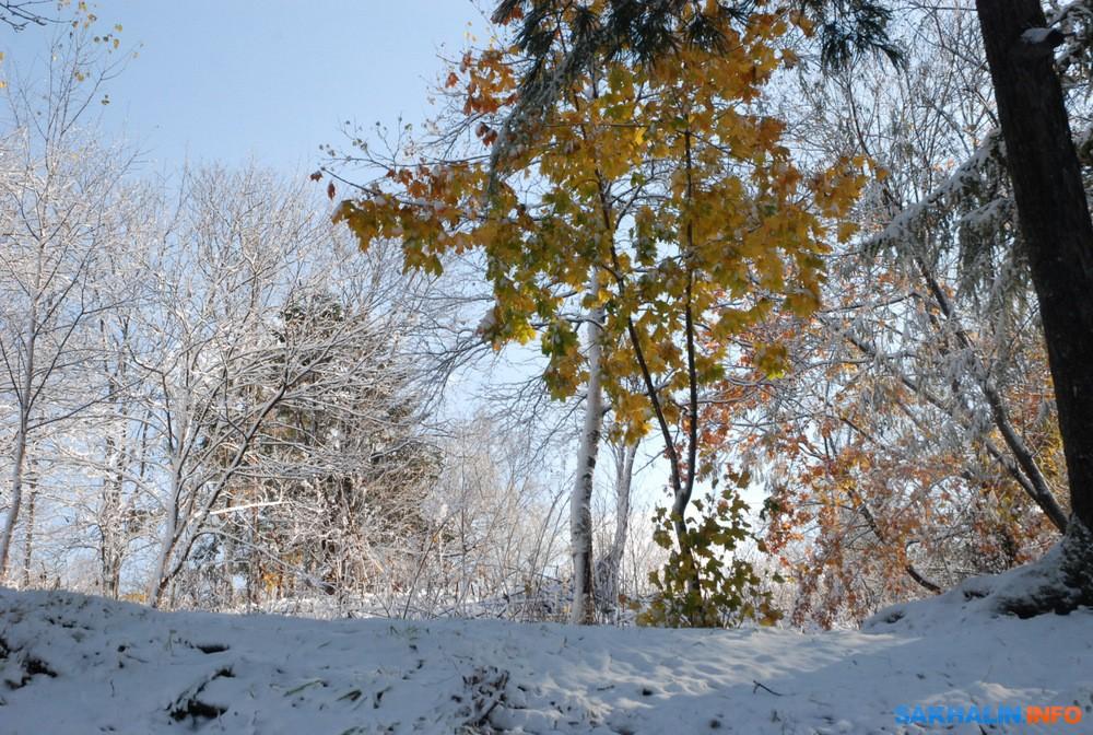 южно сахалинск снежок знакомства