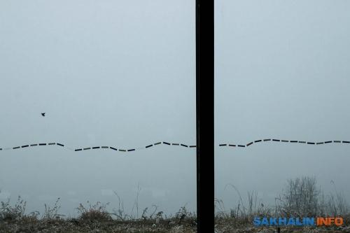 Если быне туман, увидели быСеверную Корею