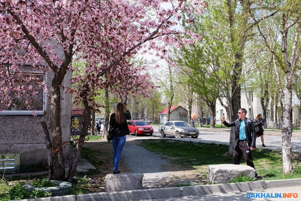 Стокгольм весной фото это
