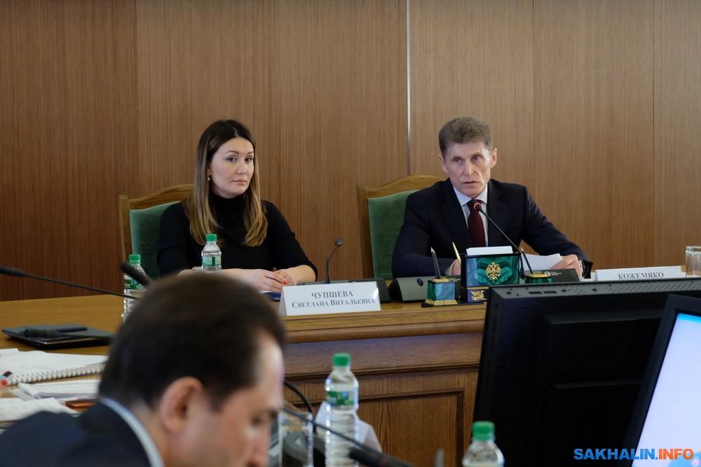Сахалинские бизнес планы гостиница идея для бизнеса