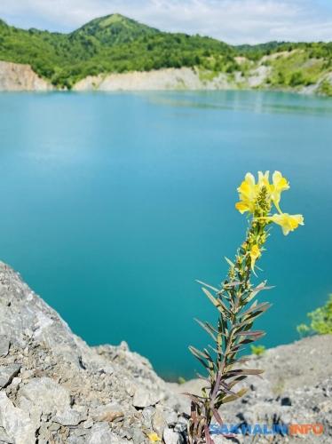 Кластерные бирюзовые озера