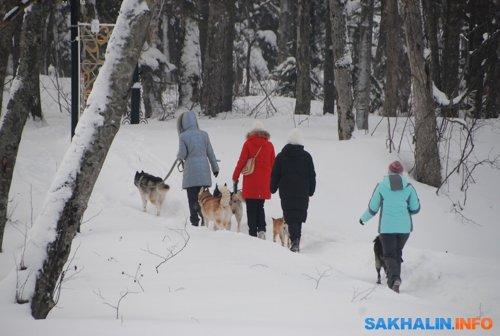 Южно-Сахалинск. Парк культуры и отдыха. Фото 22 февраля
