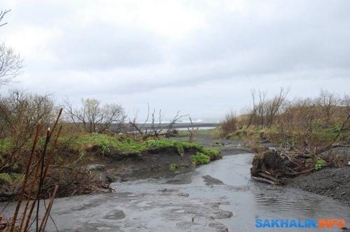 Устье Горбуши
