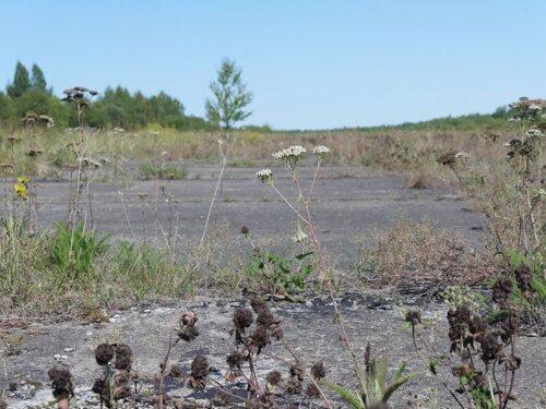 """Аэропорт в Леонидово, фото с сайта """"Иди лесом"""""""