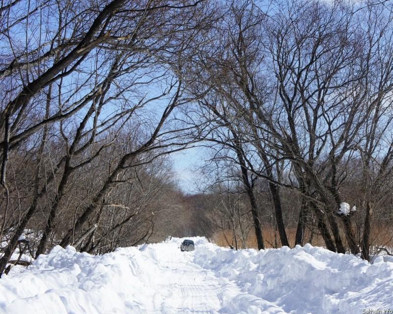 совсем получились, сахалинская весна фото спутниковой картой