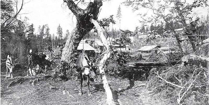 Здесь расположилась временная контора треста, 1927 год