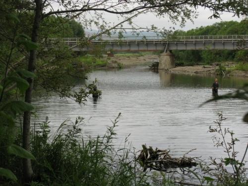 Юные браконьеры неводят, устье реки Гастелловка