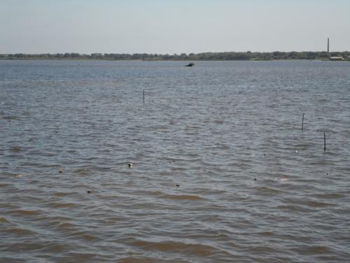 Множество сетей в устьевом участке рек Леонидовка и Поронай