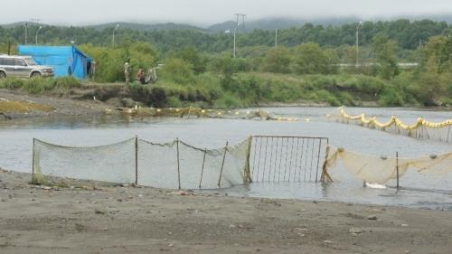 РУЗ в устье реки Горной