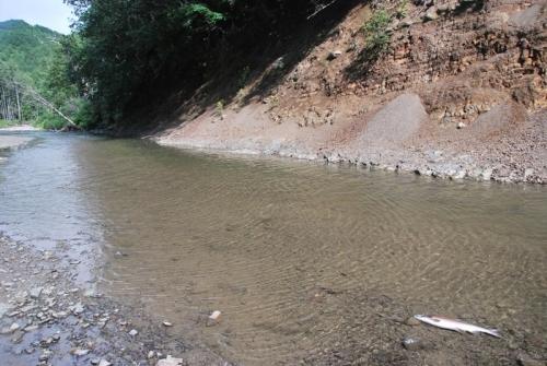Незаполненный участок реки Горная в среднем течении
