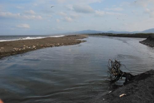 Устье и эстуарий реки Хой