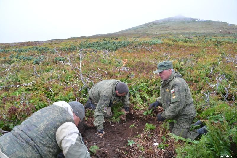 Поисковые работы на острове Шумшу http://www.sakhalin.info/kuriles.ru/96547/ - Останки солдат, найденные на острове Шумшу, будут переданы Японии | Военно-исторический портал Warspot.ru