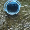 В реки бассейна озера Тунайча выпустили почти 10 тысяч мальков тайменя