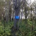В Тымовском районе начали обустраивать туристические тропы