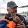 Сахалинцы, тринедели трудившиеся надликвидацией последствий циклона вПриморском крае, вернулись домой соспасенным котенком