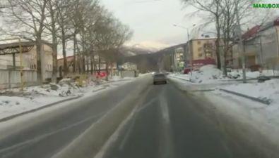 В Южно-Сахалинске собака чуть незатащила ребенка подколеса автомобиля
