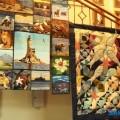 Фестиваль русско-японской культуры иискусства вЮжно-Сахалинске завершился гала-концертом