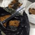 Таможенники задержали ваэропорту Южно-Сахалинска полтора килограмма чаги